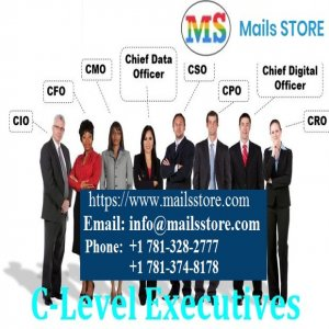 C-Level Executives Email List | C-Level Executive Mailing List | Mails STORE