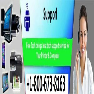 Choose The Right Expert To Get The Best Connectivity Hp Printers Support