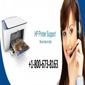 Simple Steps Are Introduced To Maintain HP Officejet Pro 9025 Printer Support Number